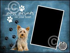 Printable DoitYourself 8x6 Yorkshire by SapphireCustomPhotos, $5.25