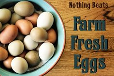 Farm Fresh Eggs: do you have chickens? This is an excellent round-up of all the fantastic reasons for enjoying more pastured eggs.