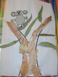 Have the children draw a step by step koala then use real bark and leaves on the tree. Use with KOALA LOU by Men Fox. Animal Activities, Animal Crafts, Kindergarten Activities, Australia Crafts, Australia Day, Aboriginal Culture, Aboriginal Art, Aboriginal Children, Australian Animals