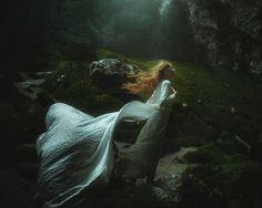 Windswept by TJ Drysdale