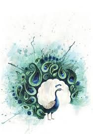 watercolor peacock .  (note: source was at Tumblr, but image has been removed... too bad!)  Gorgeous!