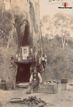 """hoardroom: """" historicaltimes: """" An Australian Swagman using a hollow gum tree as a campsite """" - Civilization in the bush - John Duncan State Library of Victoria """" Old Pictures, Old Photos, Australian Bush, Australian Icons, Australian People, Australian Homes, Le Far West, Victoria Australia, Antique Photos"""