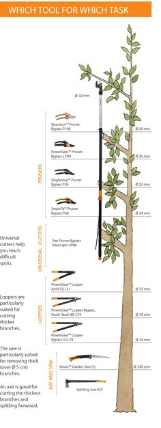 Fiskars Pruning tree - Which tool for which task?