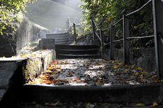 staircase_stairs_mystical_fairy_tales_sun_shadow_emergence_gradually-1166580.jpg!d (1200×800)
