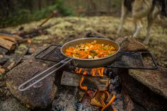 How To Eat Well & Stay Healthy Whilst Camping | Guest Blog