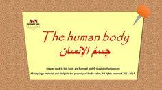 Human body by AWN