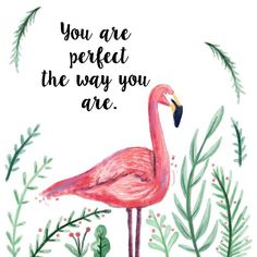 Be a flamingo in a flock of pigeons! Never be afraid to start living the life you've always imagined! Make your passion your paycheck! http://www.australiaunwrapped.com/