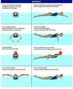 Image result for swimming stroke infographics