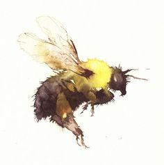 bumble bee - kate osborne