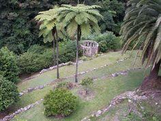 Jardín en condiciones adversas