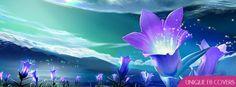 Purple Flowers Facebook Cover