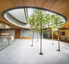 「trees inside」の画像検索結果