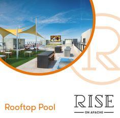 Student House, Rooftop Pool, Marketing, Design, Design Comics