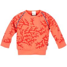Sweater Coral Reef