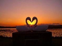 zonsondengang Liefde