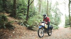 Want to go the long way round? Or just find some forest trails and go motorcycle camping? This is where you get started. Motorcycle Camping, Camping Gear, Long Way Round, Giant Bikes, Forest Trail, Dual Sport, Places To Go, Around The Worlds