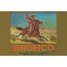 Buyenlarge 'Bronco Brand Crate Label' Vintage Advertisement Size: