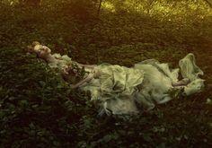 walkingthruafog:  Sleeping beauty