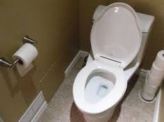 Image result for home toilet
