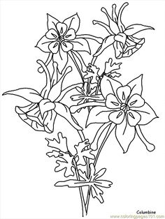 Print Columbine Flowers Coloring Pages coloring page & book. Your own Columbine Flowers Coloring Pages printable coloring page. With over 4000 coloring pages including Columbine Flowers Coloring Pages . Flower Coloring Pages, Free Coloring Pages, Coloring Books, Printable Coloring, Flower Wall Design, Rosemaling Pattern, Flower Line Drawings, Columbine Flower, Flower Outline