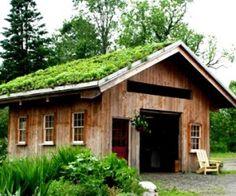 Construire son toit vegetal