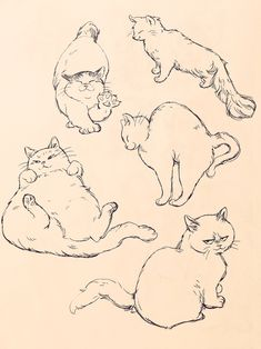 How to Start a Drawing: 5 Methods for Rookies Here is the hardest part var You have a very bright idea in your mind and you know what to do, … Animal Sketches, Animal Drawings, Art Sketches, Cat Drawing, Painting & Drawing, Illustration Art, Illustrations, Drawing Reference, Cat Art