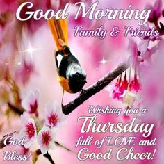 Good Morning Everyone, Happy Thursday. I Pray That You Have A Safe And  Blessed