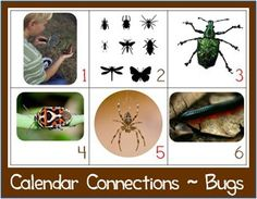 Bugs Theme Printables & More - 1+1+1=1