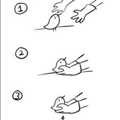 How to pick up chicks