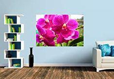Premium Foto-Tapete Ein Motiv aus dem Kalender Farbzauber Orchideen (versch. Größen) (Size S | 186 x 124 cm) Bookends, Design, Home Decor, Pictures, Erfurt, Orchids, Calendar, Wallpapers, Products