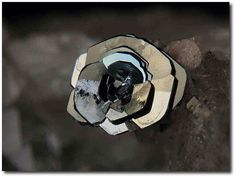 "geologypage: "" Hematite (Var: Iron Rose), Titanite | #Geology #GeologyPage #Mineral Chemical Formula Hematite (Var: Iron Rose) : Fe2O3 Titanite : CaTi(SiO4)O Locality: St Christophe-en-Oisans, Bourg d'Oisans, Isère, Rhône-Alpes, France FOV: 4..."