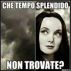 New memes friends mood ideas Kid Memes, Cartoon Memes, Cute Memes, Funny Memes, Italian Memes, Crush Humor, Text Memes, Girlfriend Humor, Tumblr