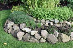 Hydrangea Shrub, Hydrangea Care, Back Gardens, Outdoor Gardens, Spiral Garden, Garden Care, Potting Soil, Hanging Plants, Native Plants