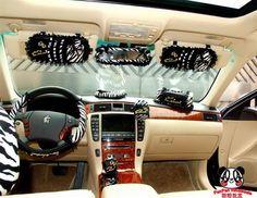 total zebra inside car!!!!