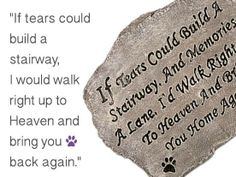 Dedicated to anyone who's lost a beloved friend !