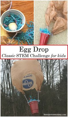 889e8a1ae73e01f3e47b0b68ae597004 1st place egg drop project ideas using science misc pinterest