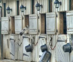 Beautiful horse barn, love this row of horse stalls