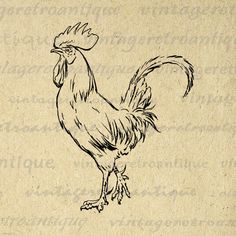 Rooster Printable Graphic Download Chicken by VintageRetroAntique