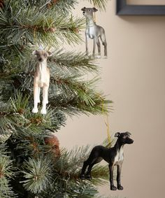 Greyhound Ornament Set