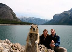 The squirrel photobomb! I wish I was that couple..that picture is priceless!