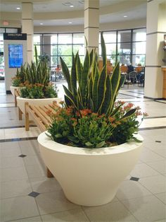 Green U0026 White Planter | Interior Landscaping Design | Pinterest | Green,  White Planters And Planters