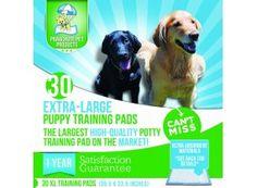 10 Best Puppy Training Pads 2015: Video Comparisons