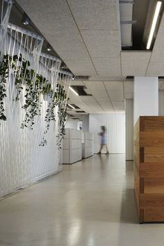 Studio Gang Architects have developed a new office space for the Natural Resources Defense Council in Chicago, Illinois. In keeping with the Natural Corporate Interiors, Corporate Design, Office Interiors, Interior Office, Retail Design, Residence Senior, Office Fit Out, Space Dividers, Interior Decorating