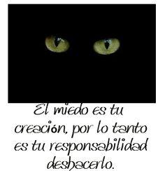 El miedo es tu creación, por lo tanto es tu responsabilidad deshacerlo.