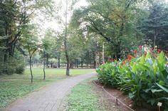서울 양재 시민의 숲
