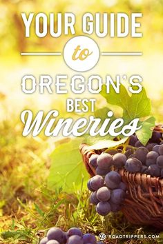 Oregon wineries are extraordinary. Here are the best of the best.
