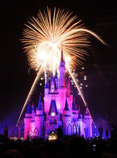 Magic and wonder light up the sky at the Wishes Nighttime Spectacular fireworks show.