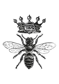 Queen Bee Tattoo, Honey Bee Tattoo, Bumble Bee Tattoo, King Bee, White Framed Art, White Frames, Etiquette Vintage, Black And White Stickers, Foto Transfer