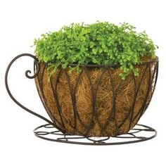 """Showcasing an openwork coffee cup design, this imaginative metal planter delights in the sunroom or nestled in your garden.  Product: PlanterConstruction Material: MetalColor: BlackDimensions: 5.5"""" H x 10.63"""" W x 8"""" D Note: Plant is not included"""