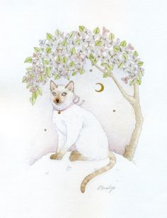 cat and bougainvillea   watercolours and lead pencil
